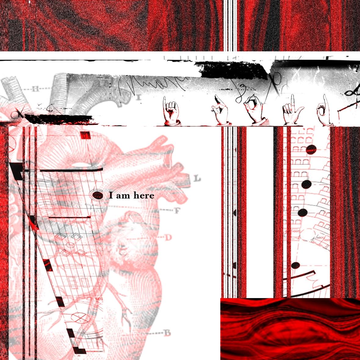 I_Fold_02_Collage_062414